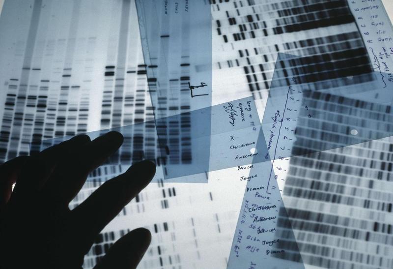 DNA_testing